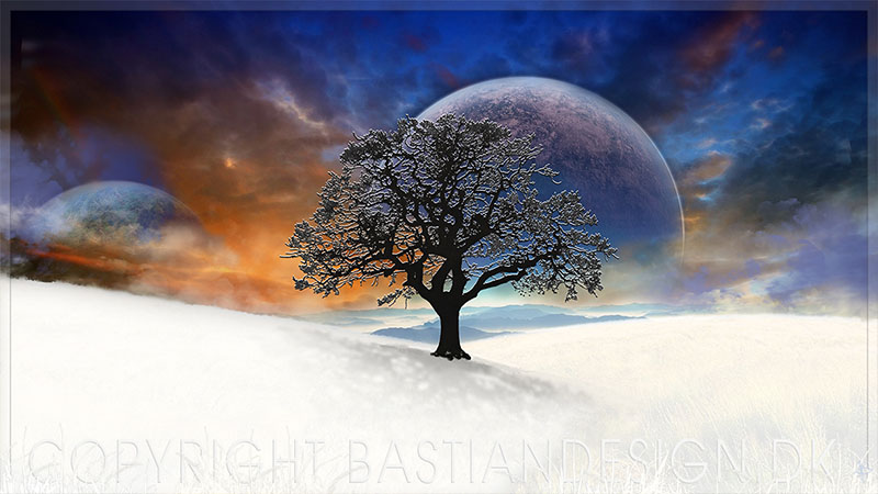 Oak in Space and Snow