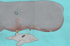 Frida og den grå delfin